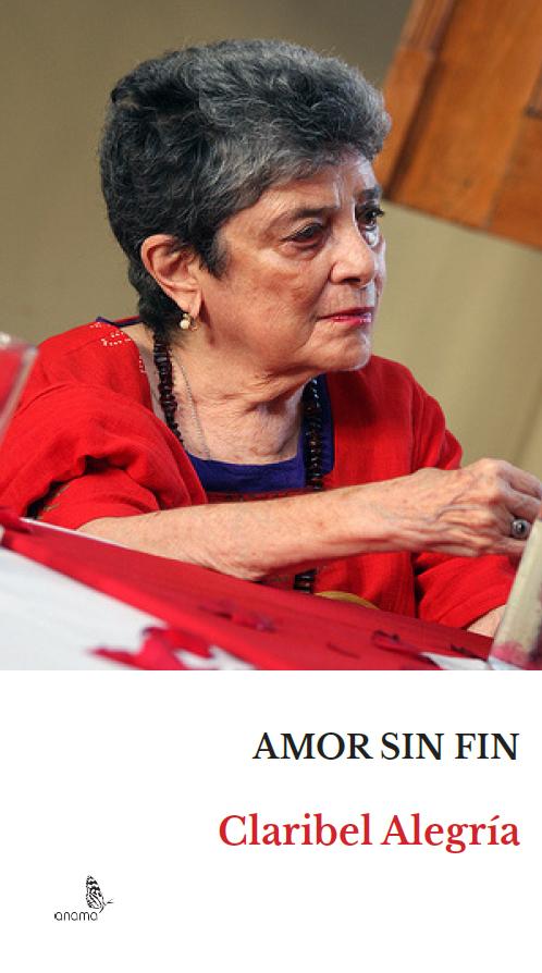 PORTADA AMOR SIN FIN